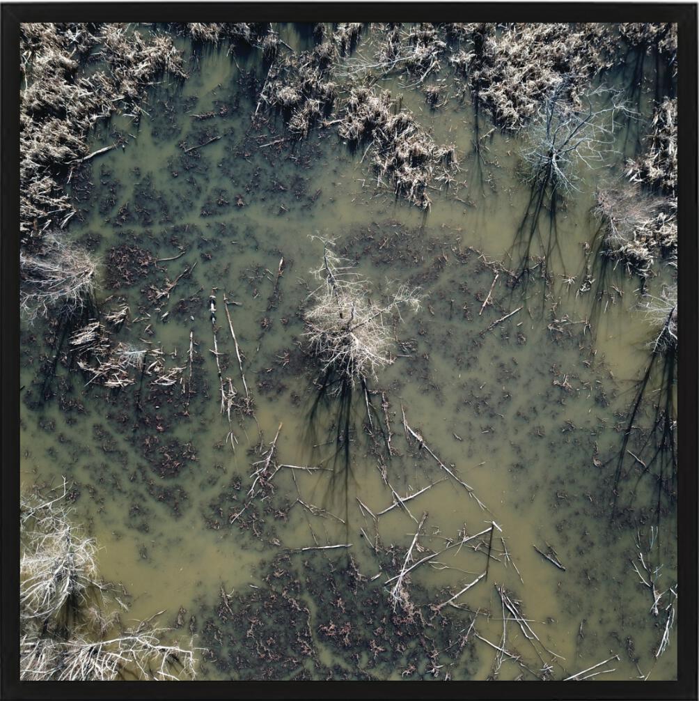 Flood by Aaron Owens